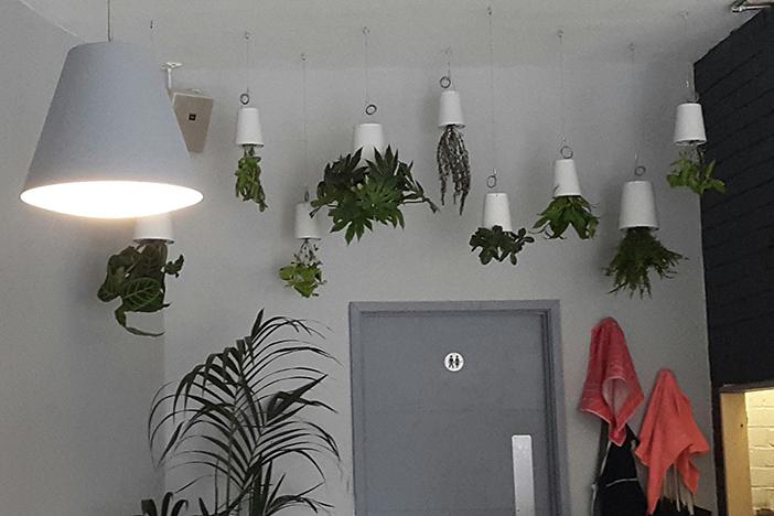 The Plant Room   Brighton Source