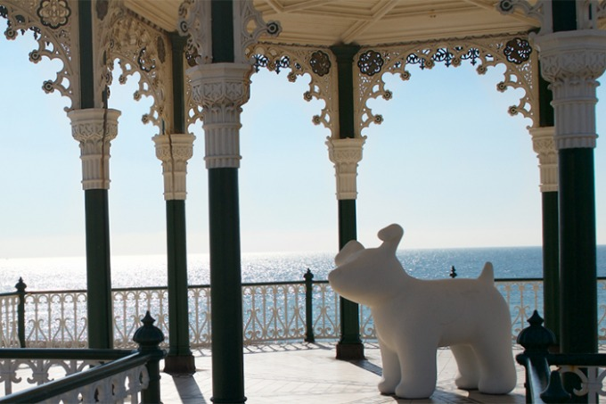 Snowdogs | Brighton Source