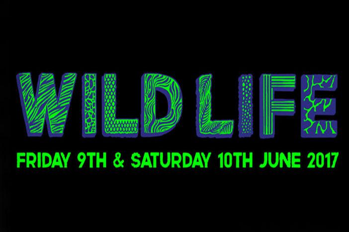 Wildlife Festival 2017 | Brighton Source