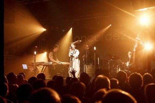 Lamb | Brighton Source